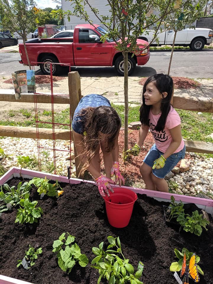 Community Garden at 3rd and Erie girl planting 2